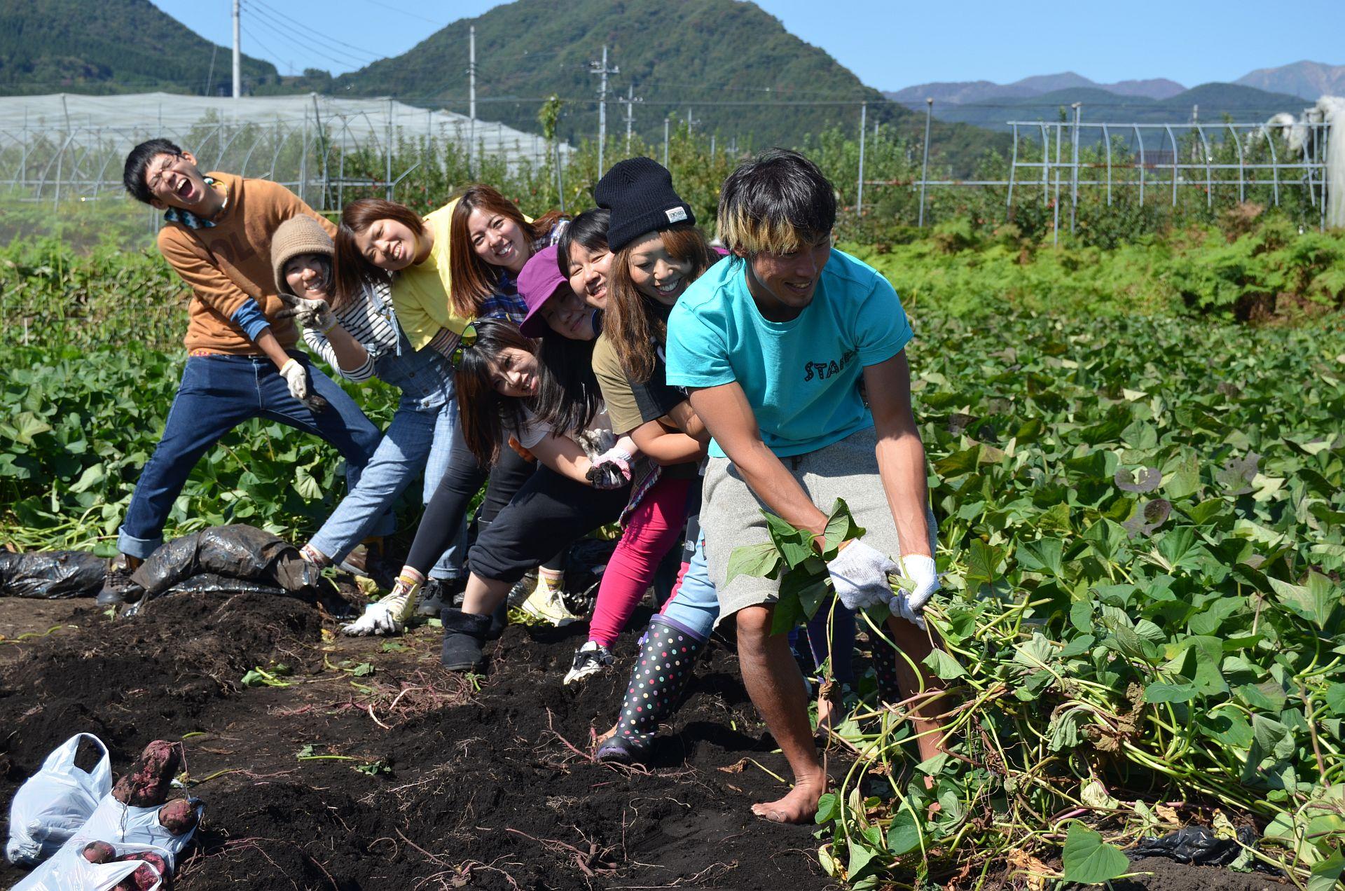 秋のイモ掘りカッパCLUBキャンプツアー10月11、12日(土、日)