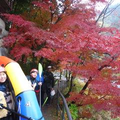 雨の紅葉もなかなかいいものです!パックラフト御岳ツアー