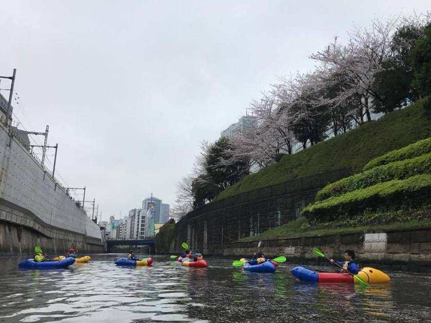 満開の桜を求めて!東京遠征~002