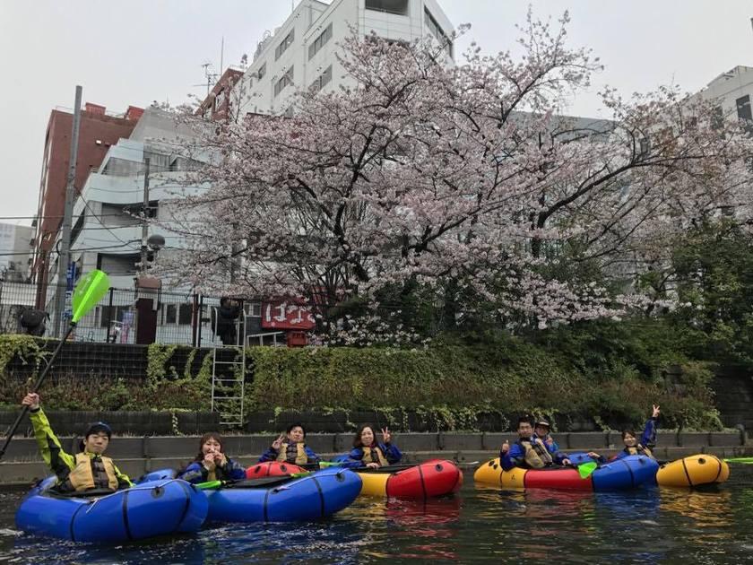 満開の桜を求めて!東京遠征~001