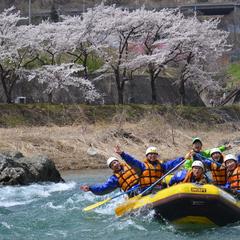 桜を見ながら贅沢ラフティング!