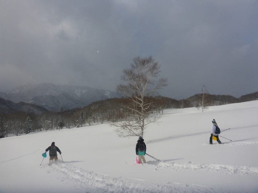 この冬初のスノーシュー1DAYツアー開催です\(^o^)/006