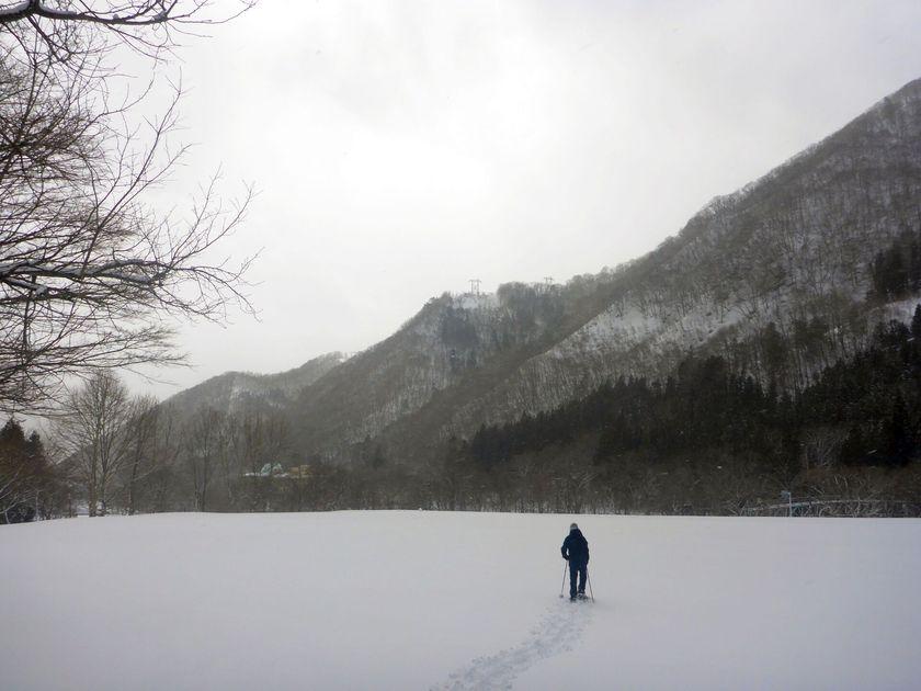 大自然の中で癒しのスノーシュー半日ツアー003