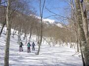 青空も雪面も笑顔もキラキラ輝く!スノーシュー1日ツアー